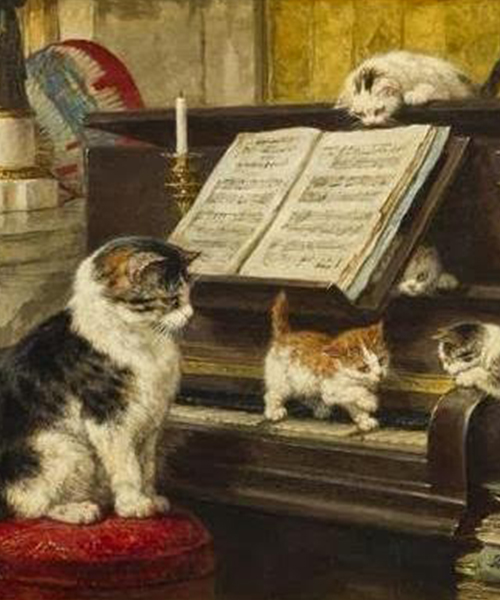 Chats et piano